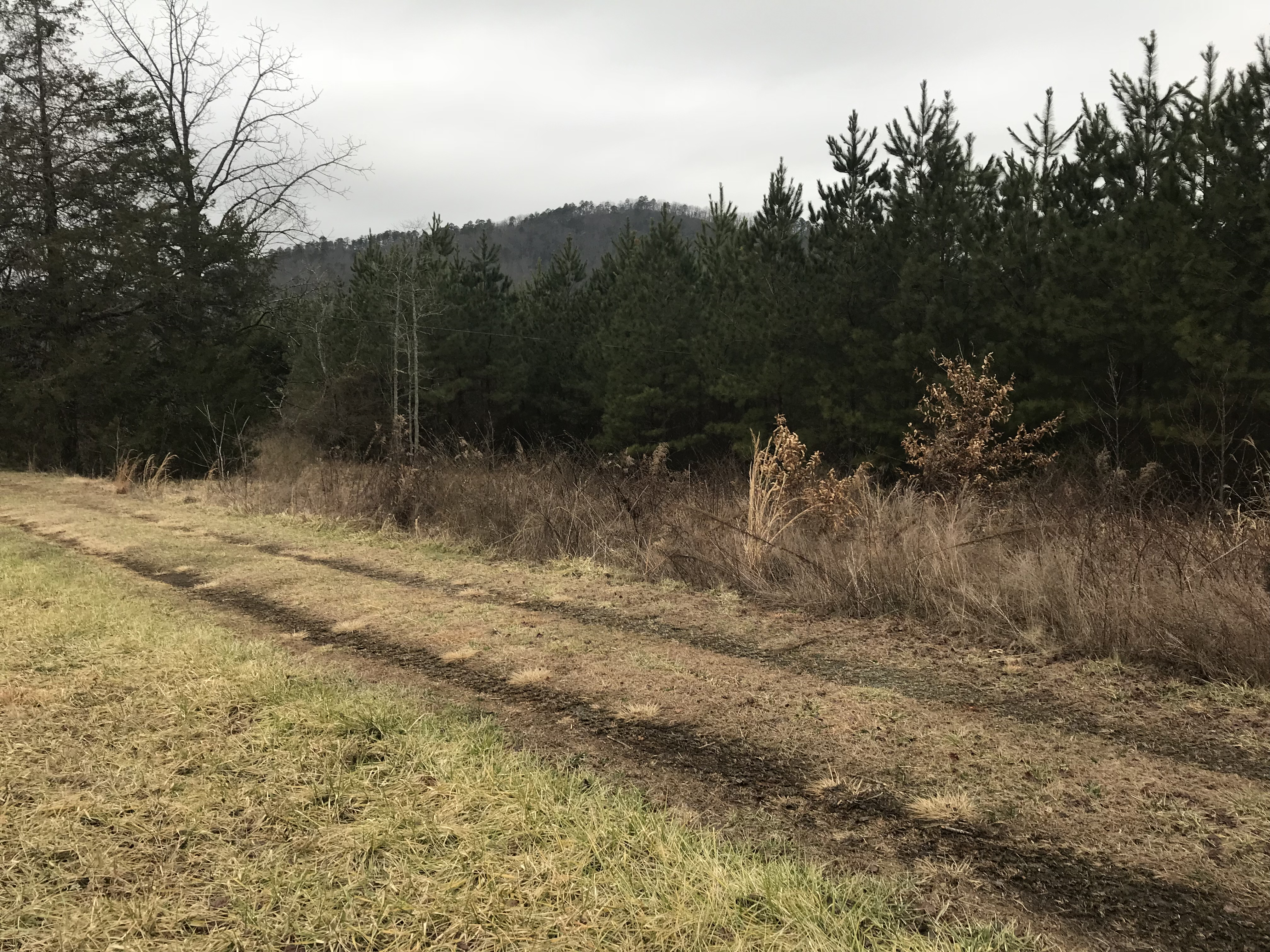 36 Acres Unrestricted Property